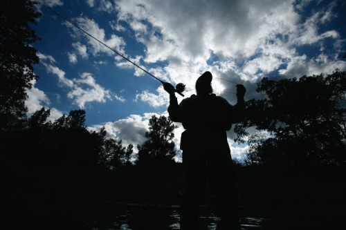 Fly-fishing in Only, TN
