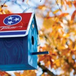 Tennessee Birdhouses for Our Feathered Friends