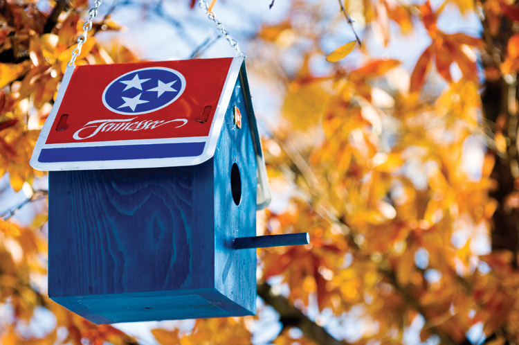 birdhouse, Tennessee