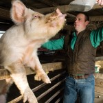 Q&A: Brandon Whitt, Young Farmer With 'Some Pig'