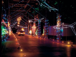 Bristol Motor Speedway, holiday, lights
