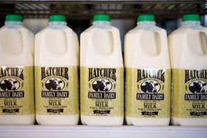 Hatcher Dairy. milk
