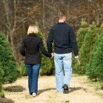 Trek to a Tennessee Christmas Tree Farm