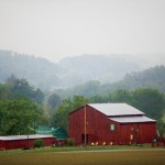 Tennessee Century Farm Families Are Deep-Rooted in Agriculture