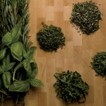 Herb Gardens Grow Great Ingredients