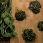 Herb Gardens Grow Great Ingredients