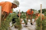 Garden of Hope Project for Inmates