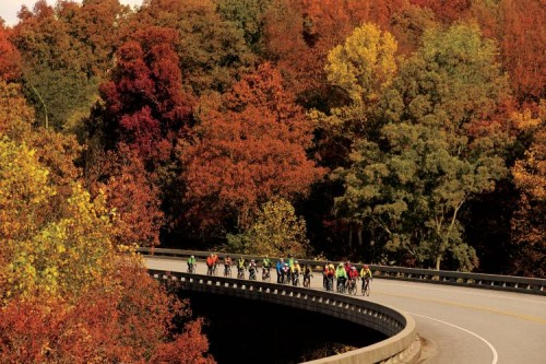 Natchez Trace Parkway Bicycle Trail
