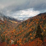 Tennessee – 2012 Photo Contest Honorable Mentions