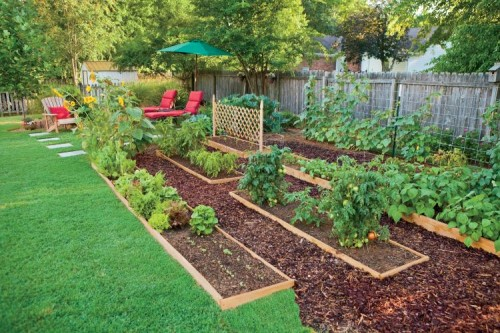 Landscaping With Edibles : Edible landscaping how to eat your yard