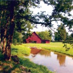 2013 Tennessee Farm Bureau Federation Photo Contest