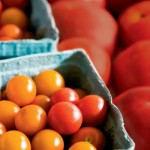 Farm Facts: Tomatoes