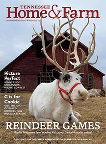 TN Home and Farm Winter 2013-14