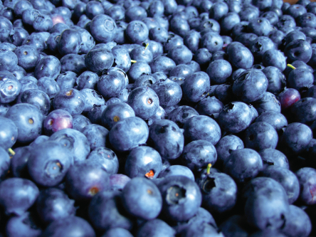 Blueberries and Bar-b-que