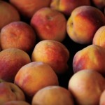 Peachy Ponderings: From Tree to Table