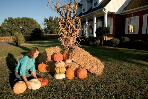 Fall decorating services