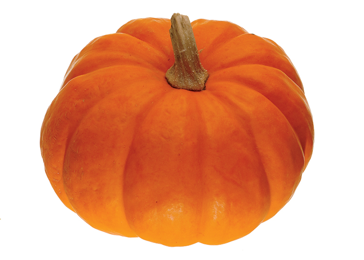 Fresh Pumpkin Puree Is Pure And Simple